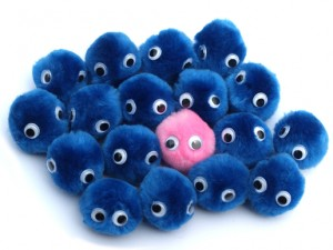 blue fuzzy bugs and one pink one